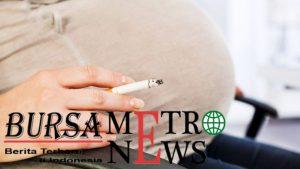 Para Ilmuwan Menemukan Bahwa Merokok Membahayakan Hati Bayi Yang Belum Lahir