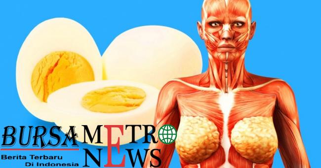 9 Hal yang Akan Terjadi pada Tubuh Anda Jika Makan 2 Telur Sehari