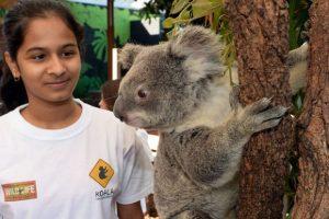 Kena Tumor Otak, Impian Bocah 8 Tahun Bertemu Koala Terwujud