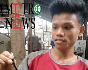 Karyawan Pabrik di Kembangan Kembali Temukan Kobra