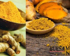http://www.bursametronews.com/bahan-alami-yang-dipercaya-untuk-melawan-kanker/