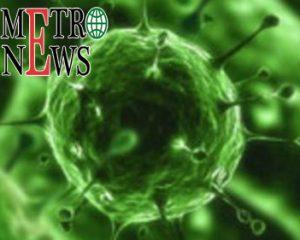 WHO Rekomendasikan Dua Alat Tes Covid-19 Organisasi Kesehatan Dunia (WHO) merekomendasikan dua alat tes Covid-19, genesig Real-Time PCR Coronavirus