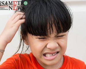 http://www.bursametronews.com/fakta-mengenai-serangan-kutu-rambut-pada-anak/